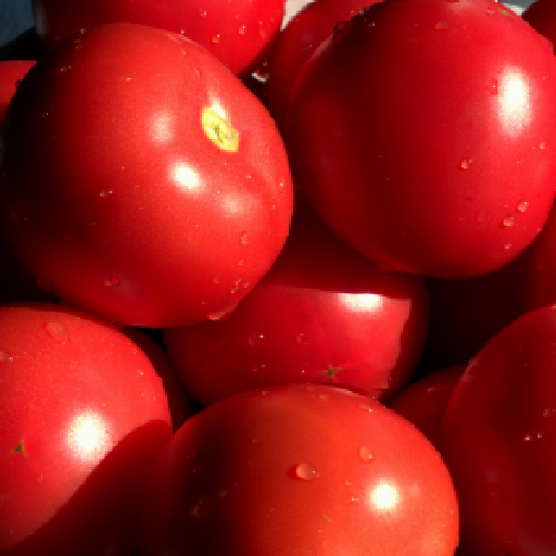Complete information on how to plant and grow tomatoes